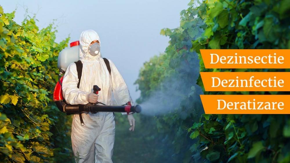 Servicii Deratizare Dezinsectie Dezinfectie Sector 3 Bucuresti