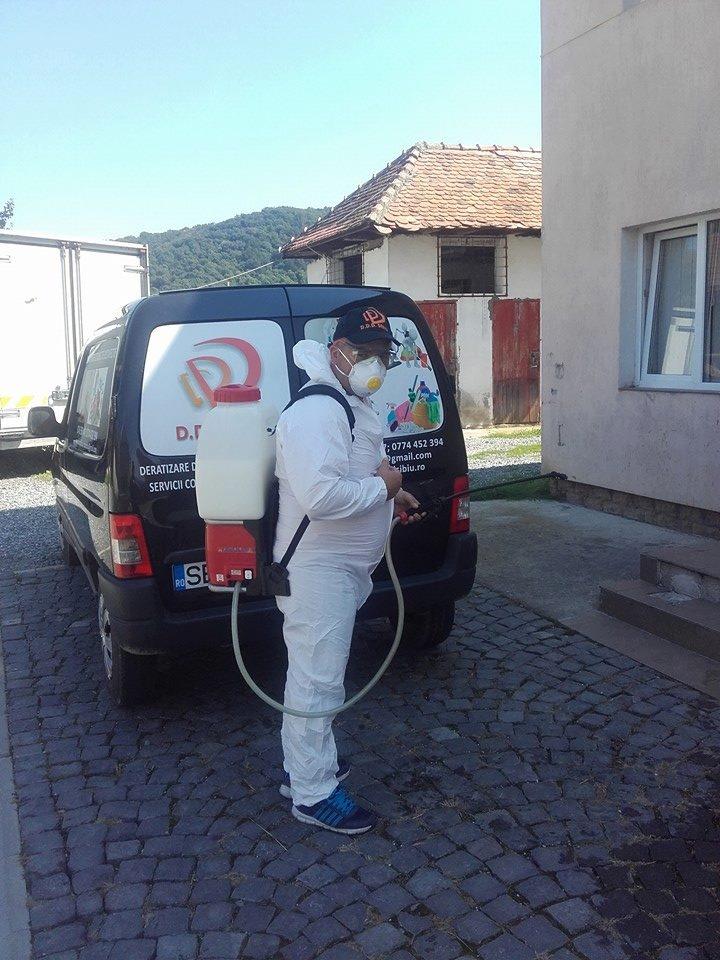 Servicii Deratizare Dezinsectie Dezinfectie Sibiu